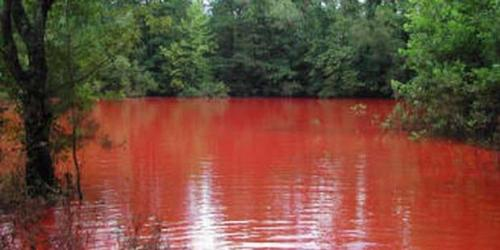 Blood_lake